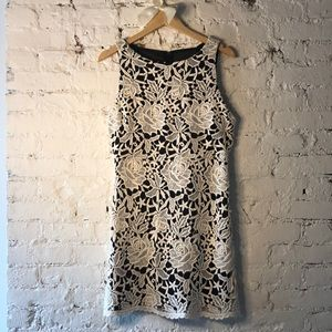 Alice & Olivia Lace Embroidered Dress Black White